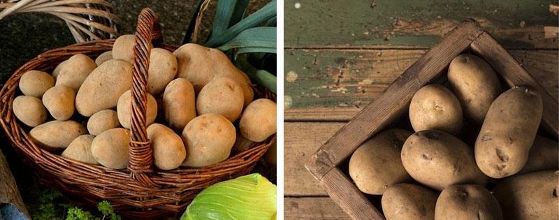 Картофель в корзине и ящике