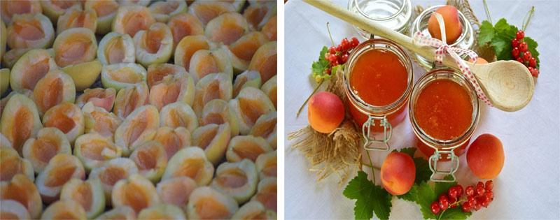 Заготовка абрикосов