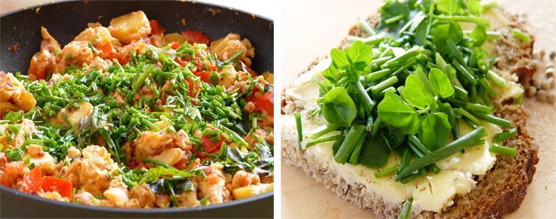 Зеленый лук в блюдах