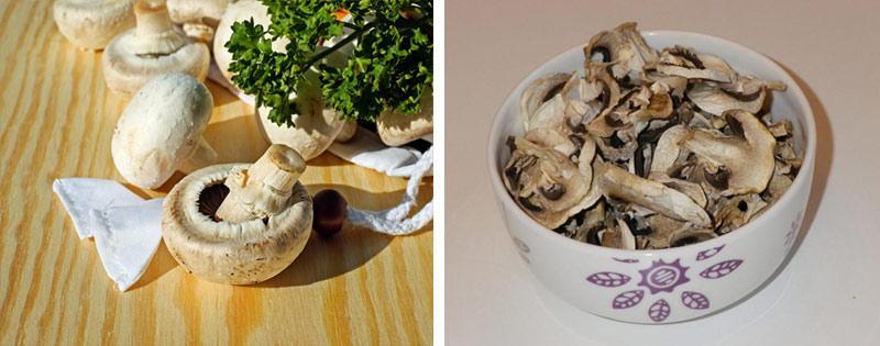 Варианты заготовки грибов шампиньонов