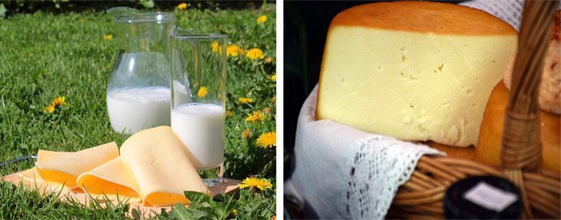 Заморозка молочных продуктов