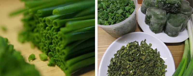 Зеленый лук заморозка