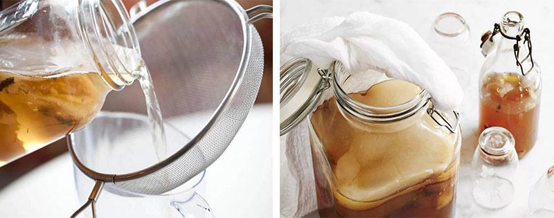 Хранение чайного гриба